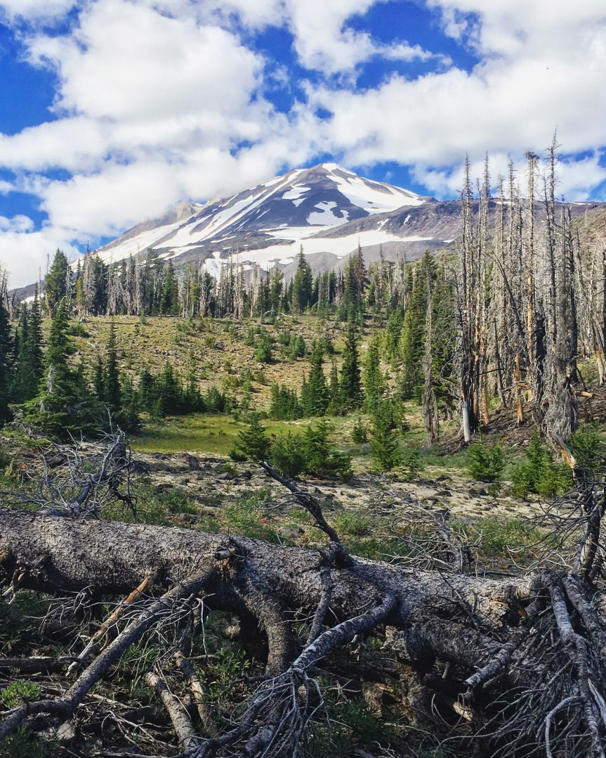 Mt. Adams Wilderness (revisited)