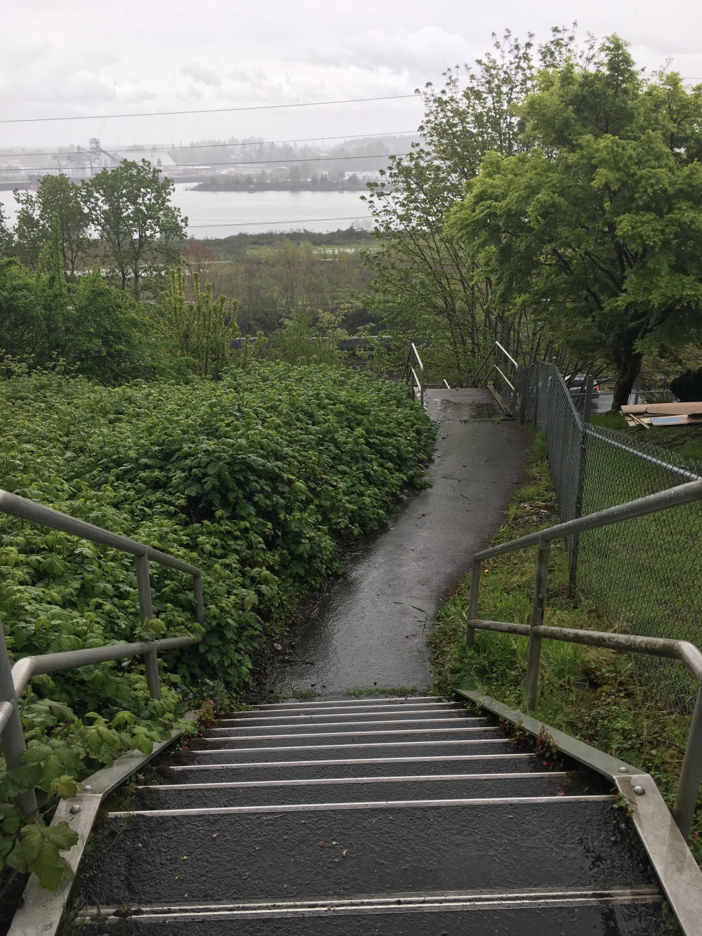 linntonloopforestpark14