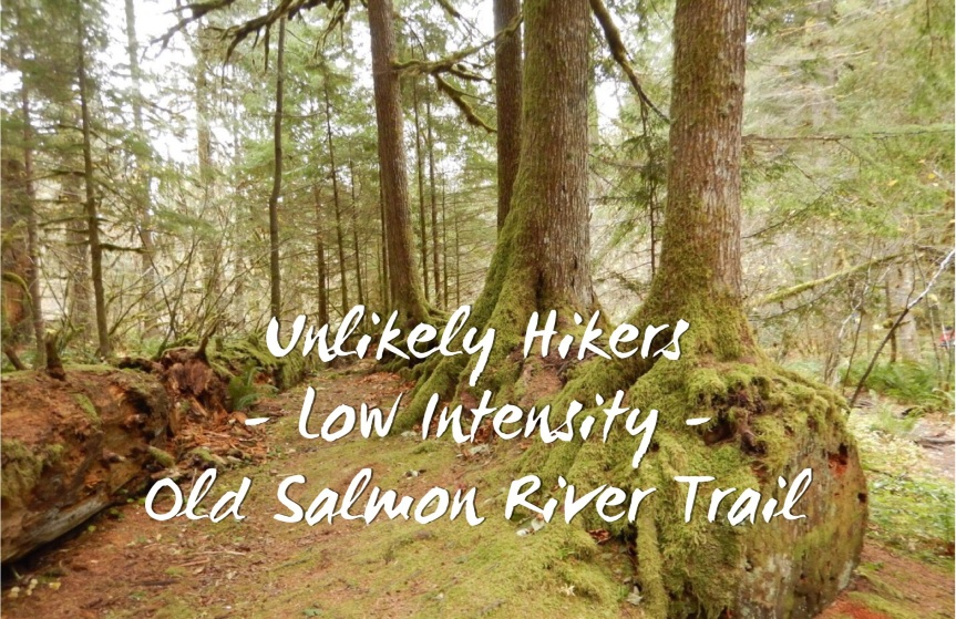 Group Hike – Low Intensity – Old Salmon River Trail